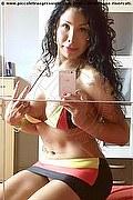 Spresiano Trans Escort Kassandra Xxl 349 7421336  foto selfie 5